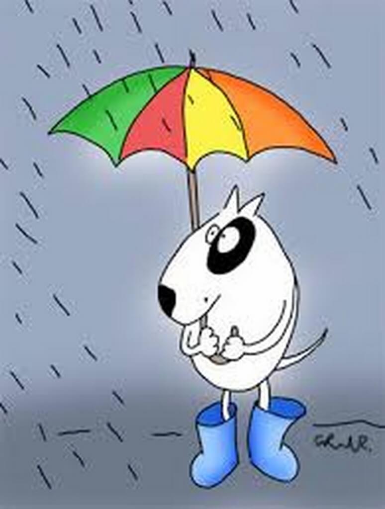 deszcz (Kopiowanie)