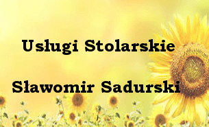 Sławomir Sadurski